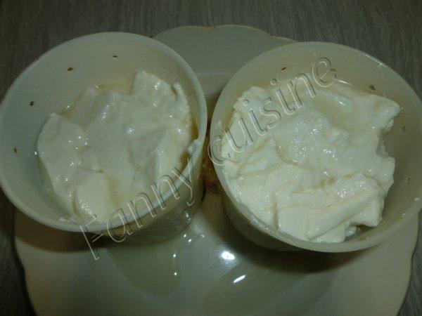 Fromage de chèvre maison au thermomix