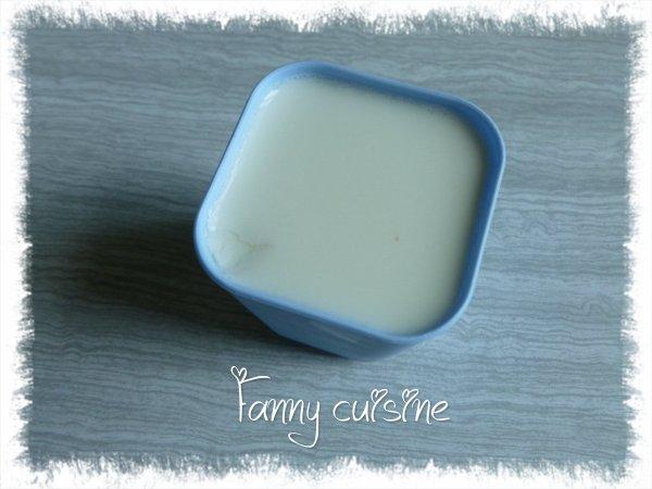 Yaourt nature (au lait concentré)
