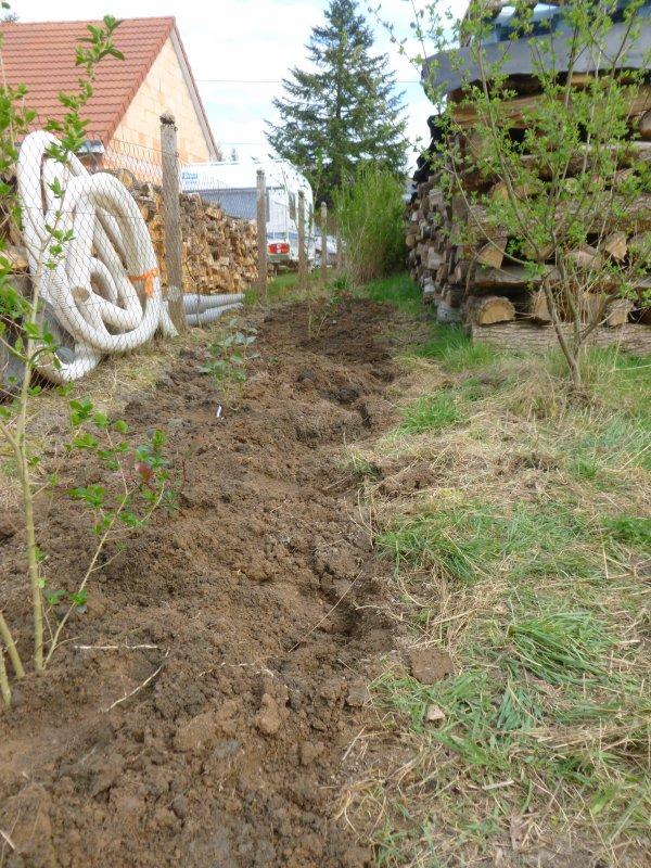 Plantations Partenariat Les Clos Férreols