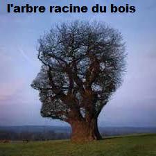 LE BOIS PREND VIE ( POSSIBILTE DE REFAIRE SUR DEMANDE )