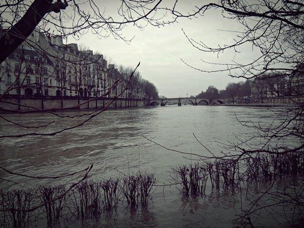 Paris est un synonyme de gris .