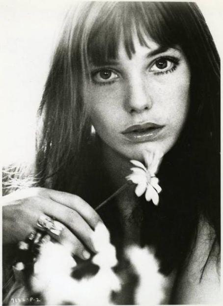 """"""" Il y a des FLEURS partout pour qui veut bien les voir """" Matisse"""