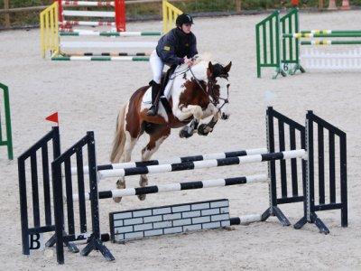 Mon cheval est formidable