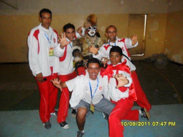 senigale2011