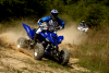 Dirt77Raptor