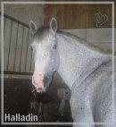 Photo de Mlleslove-halladin