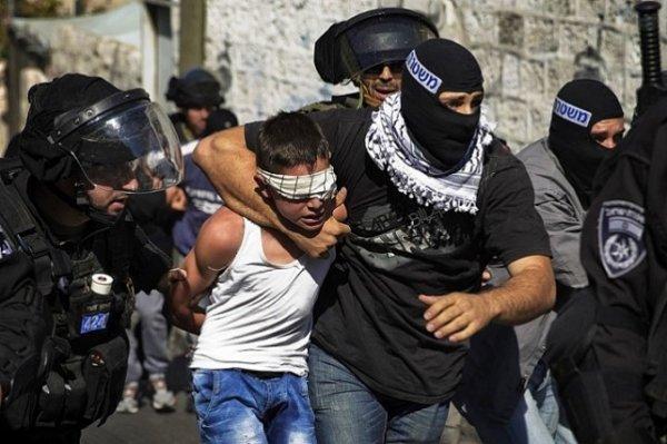 240 enfants palestiniens victimes d'abus sexuels dans les prisons israéliennes...