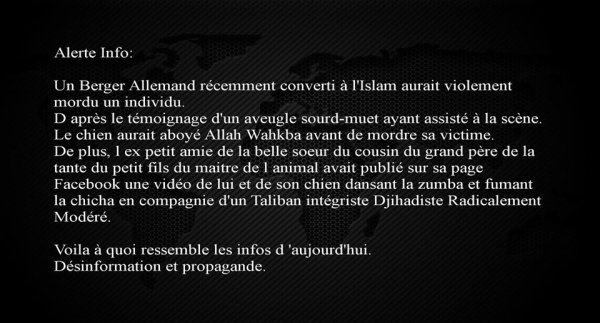 Voilà à quoi ressemble nos infos des JT français , TF1 - F2 - BFM- ITélé....