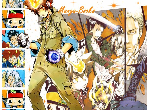 Katekyo Hitman Reborn !Manga-Books