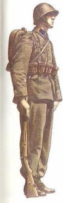 Cavalier Polonais