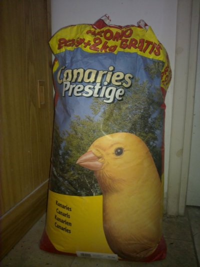 my bird room and some of bird and product ans seed