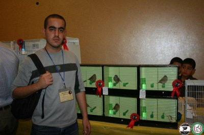 My birds during the annual exhibition of the palestinian ornithological association 2011
