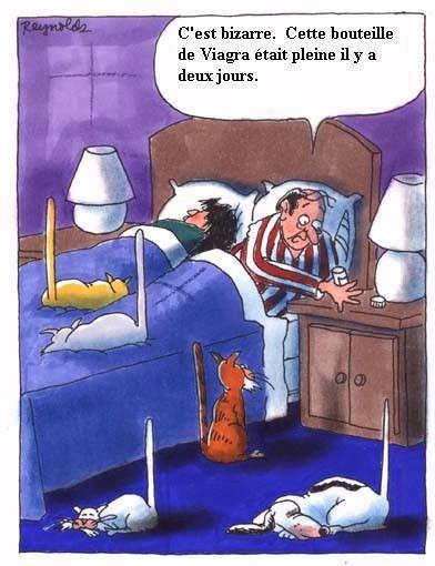 Les Blagues Pourri De La ChieusE !!!!!!
