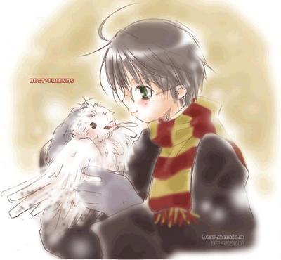 Harry et sa chouette hedwige harry potter en manga - Chouette hedwige ...