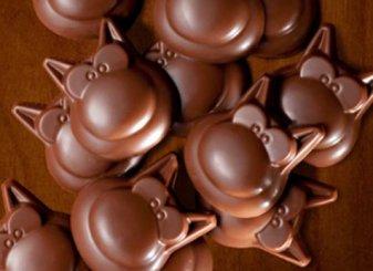 LES CHOCOLATS SONT ARRIVES