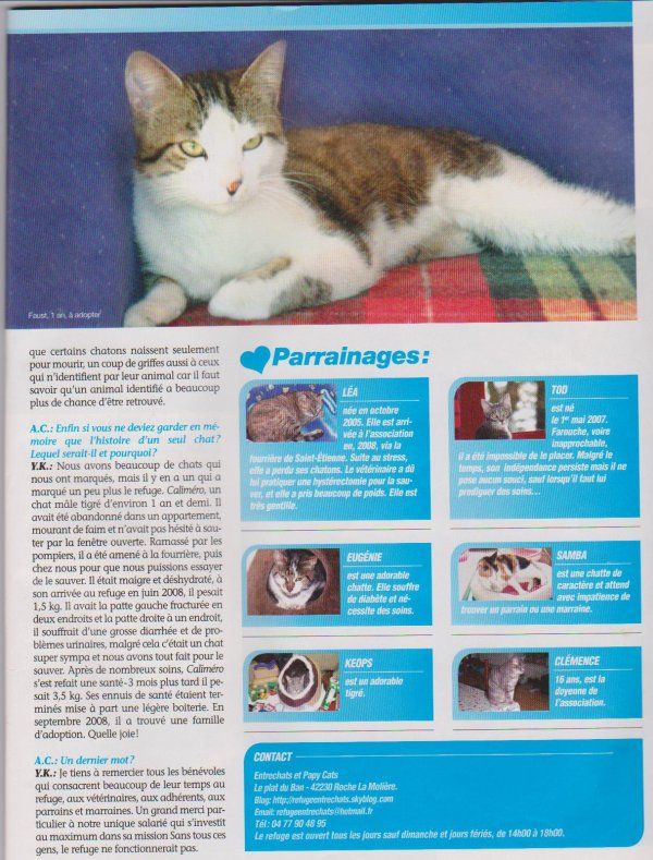 ARTICLE ATOUT CHAT DE SEPTEMBRE 2011