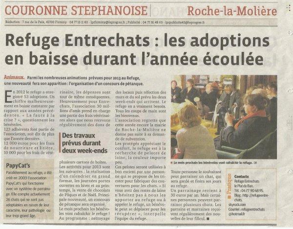 ARTICLE DU 06/02/2013