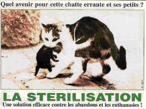 C'EST TOUJOURS BON DE LE RAPPELER