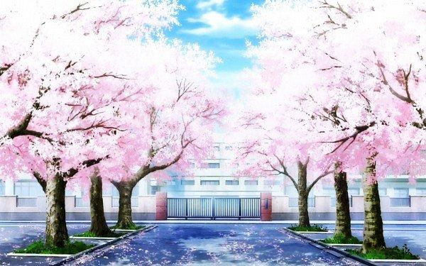 Bienvenue a L`Etablissement Shuei