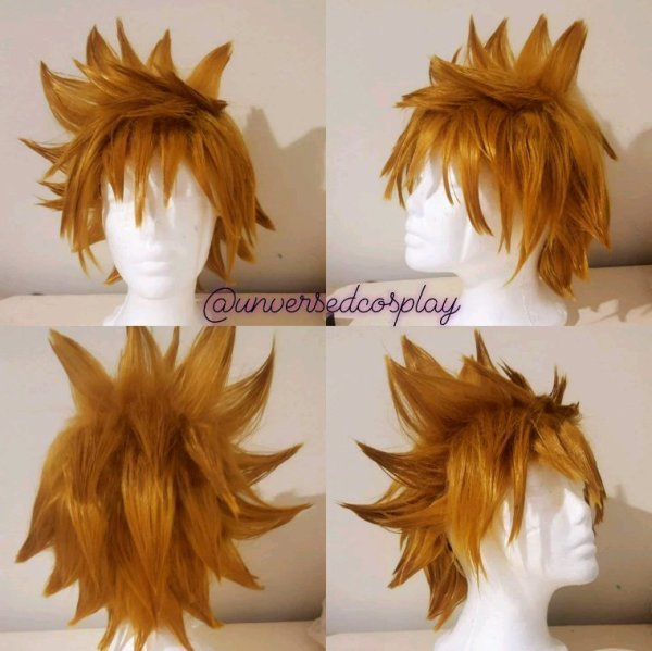Roxas wig