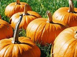 bienvenue au mois d'octobre