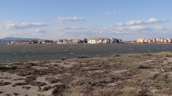 un peu du midi  barcarès près de Perpignan