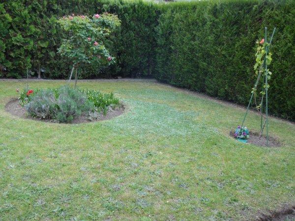 mon jardin   que c'est agréable en ce moment quand il pleut pas d'en profiter
