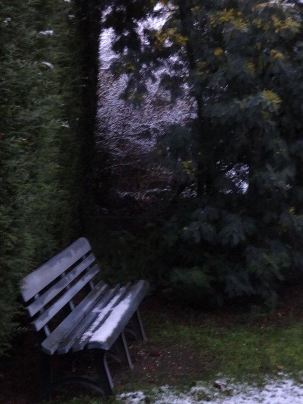 la neige est arrivée chez moi, le mimosas va pas apprécier