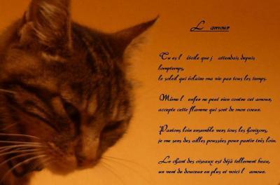 Poeme Nathalie