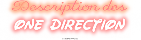 Description des One Direction  ! ♥