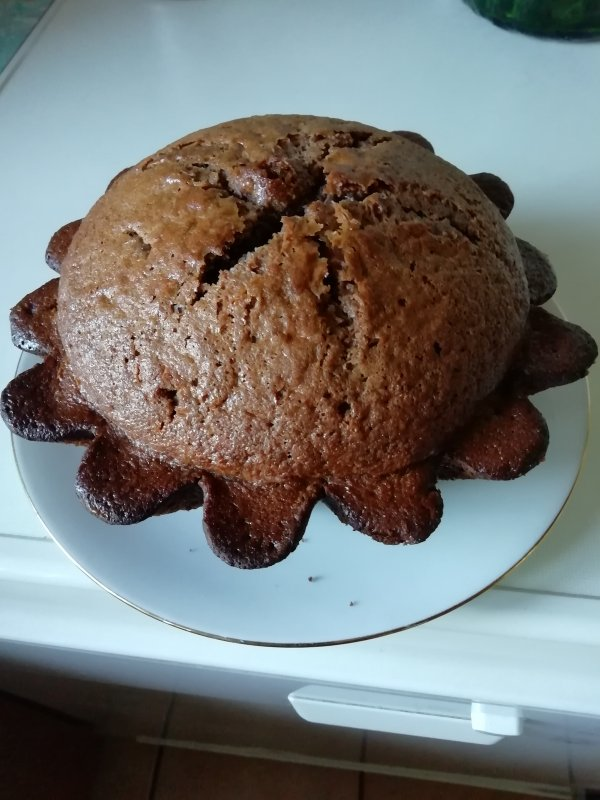 fait par mes petites mains sac pour transporter les tartes ou les gâteaux c'est bien pratique