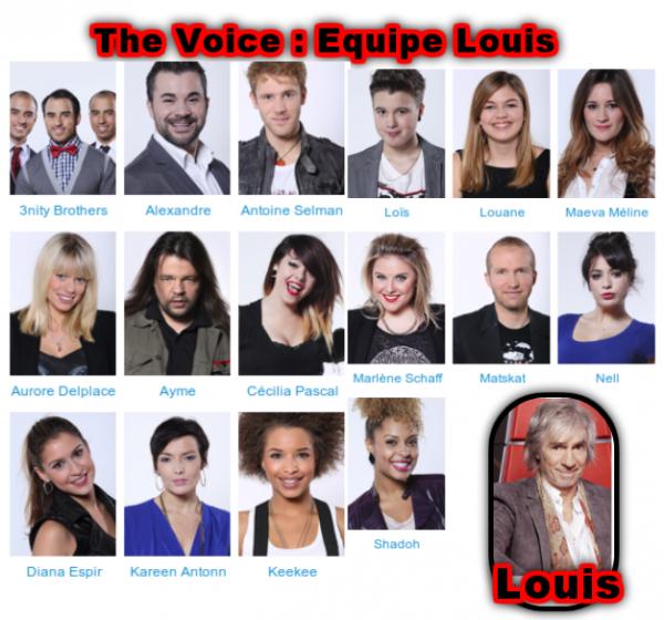 The voice 2 : Les équipes