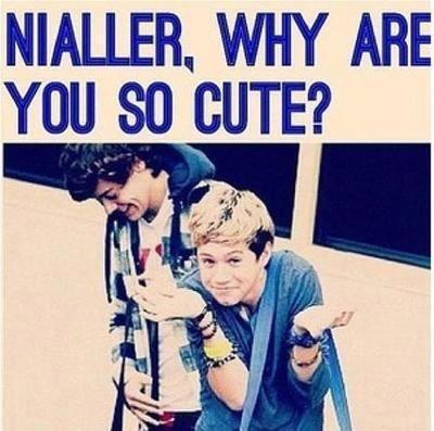 Nialler, Pourquoi tu es trop mignon ?
