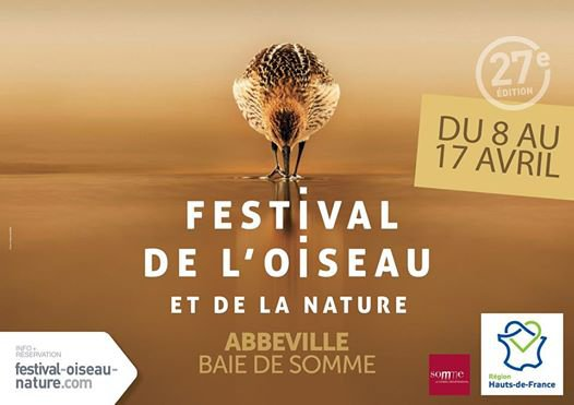 Festival de l'oiseau , du 8 au 17 avril 2017 , Somme ...
