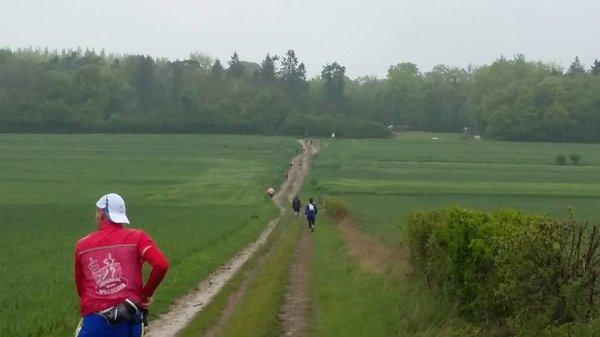 Trail des gros chênes , dimanche 7 mai 2017 , Loeuilly , Somme ...