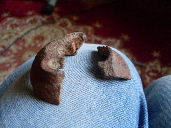 Et voila les fouilles d'hier !!!!