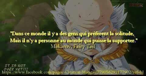Fairy Tail. (4)