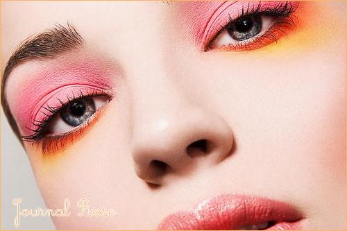 ❥ . J O U R N A L R O S E          . Jeudi 06 Janvier 2011          . 14 h 38 . Fan de Make Up
