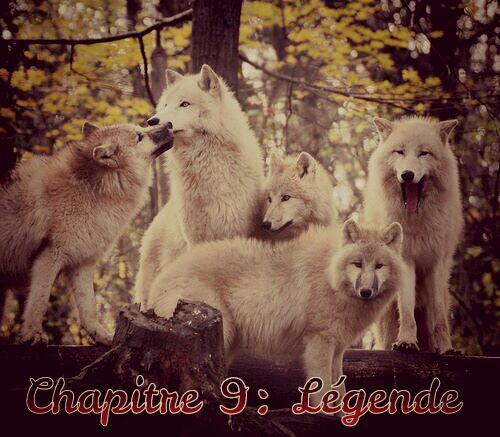 Chapitre 9: Légende