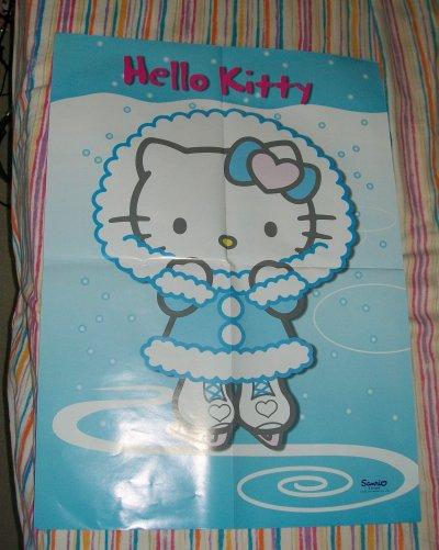 poster kitty skating