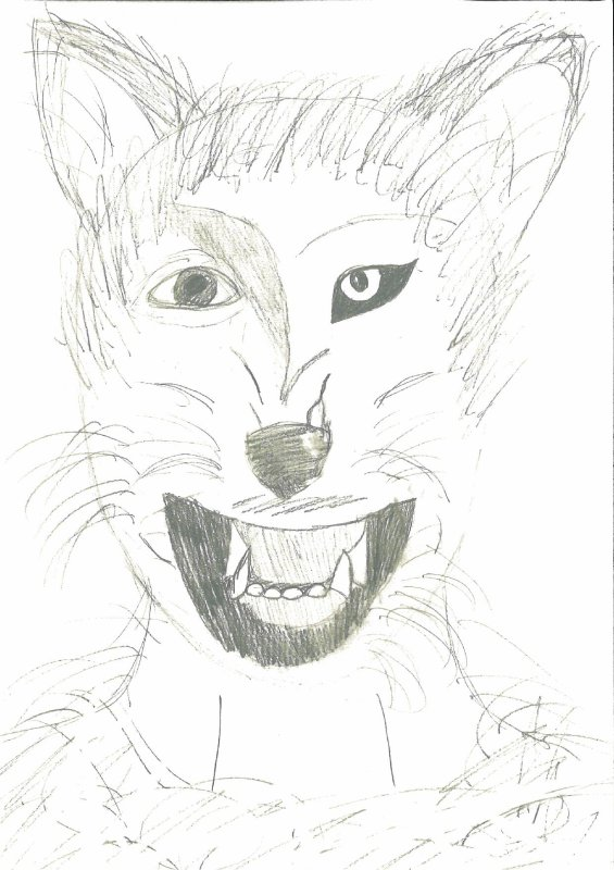 Transformation d'humain en loup-garou !