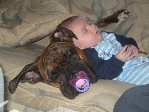 (l)(l)(l)DES ENFANTS...DES ANIMAUX...(l)(l)(l)