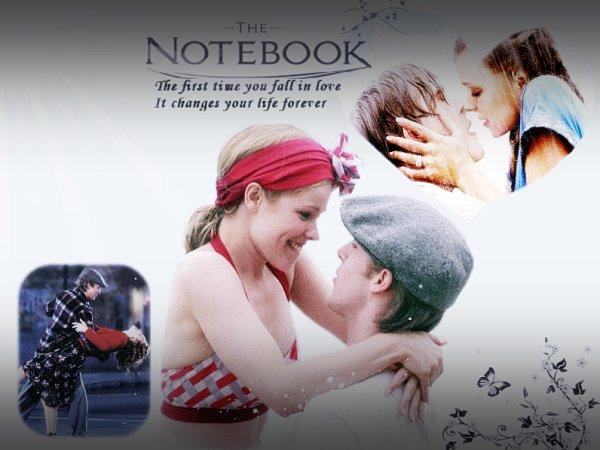 > Actu Cinéma : The Notebook - N'oublie Jamais .