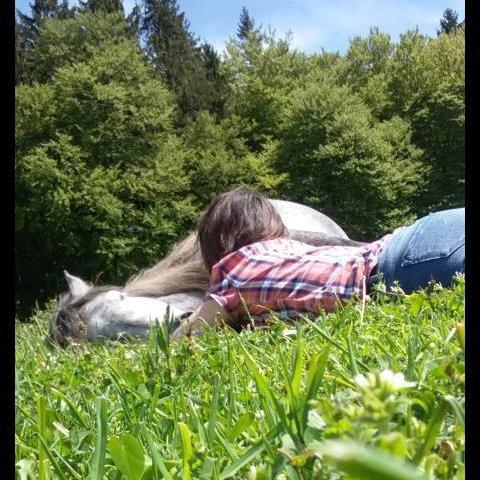 ~ Il n'y a pas de secret plus intime que celui du cavalier et son cheval ~