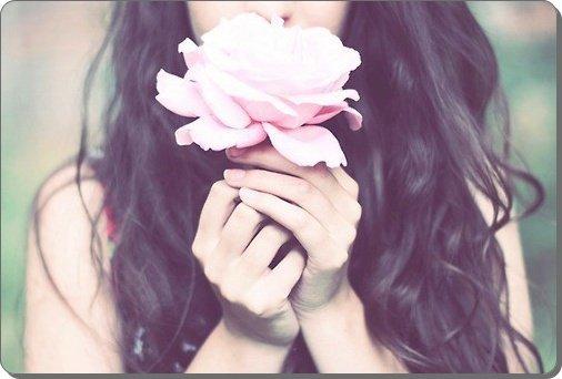 ! PLASTIC ROSE !