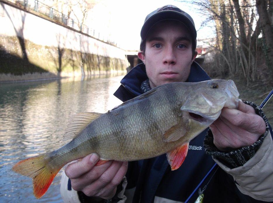 Vidéo la pêche spinning pour les débutants