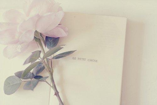 """""""Le sentiment amoureux se mesure à l'ampleur du manque, à l'état fiévreux dans lequel l'absence de l'autre nous plonge.""""  Francine Noël"""