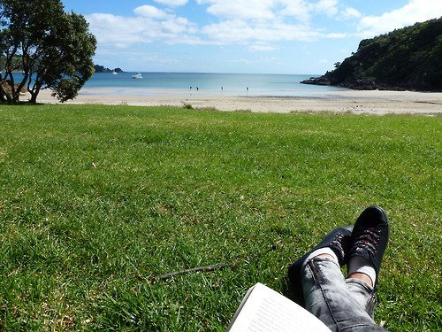 Tag Summer Book