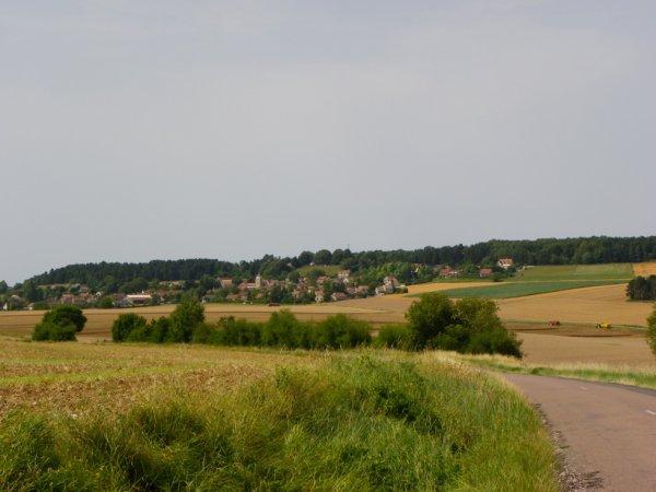 Moisson 2013
