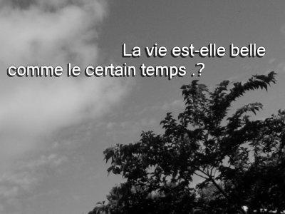 ❤❤  Seulement ,, Est-tu Vraiment Mon ami, Un veritable ami .?  ❤❤